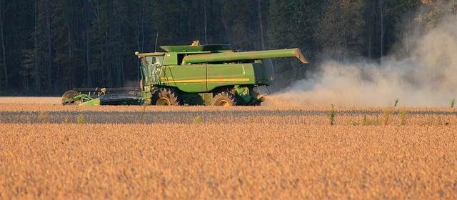 harvest-photo