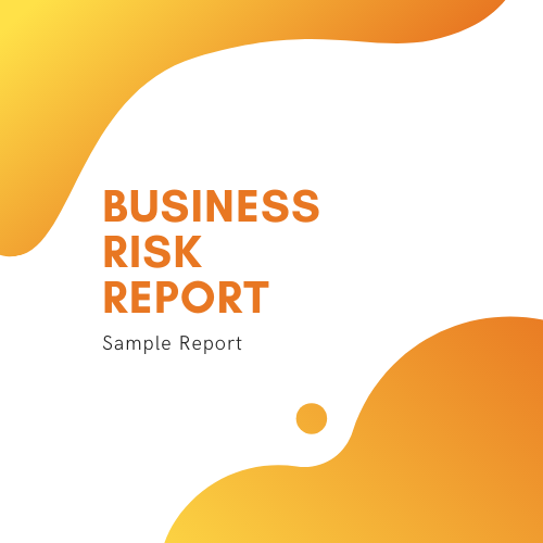 Business Risk Report